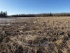 clary_lake_west_meadow_360_pan