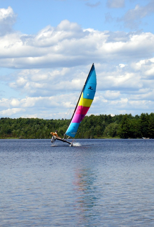 george-and-leo-sailing01