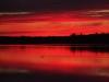 sunset-loon-cdd16eec4935deeb1105759ec264eacebfee9484